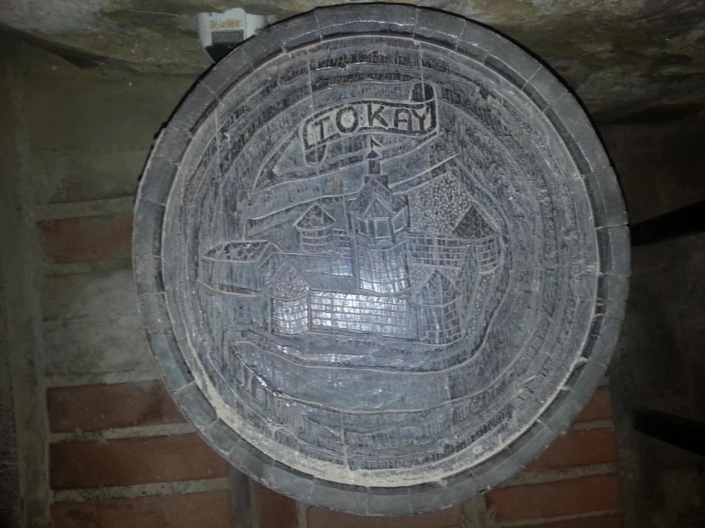 die Inselfestung Tokaj